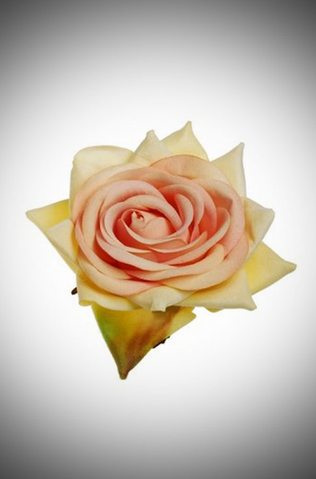 Pastel Apricot Vintage Style Velvet Rose - perfect for pin up girls