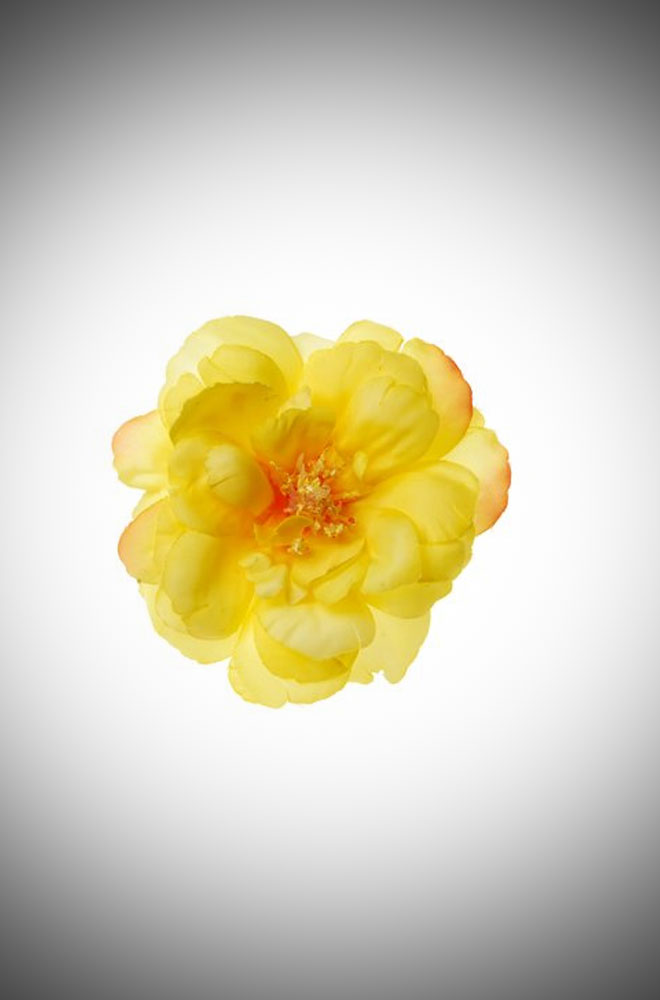 Vintage style pinup Lemon Yellow Old Fashioned Rose Hair clip and brooch